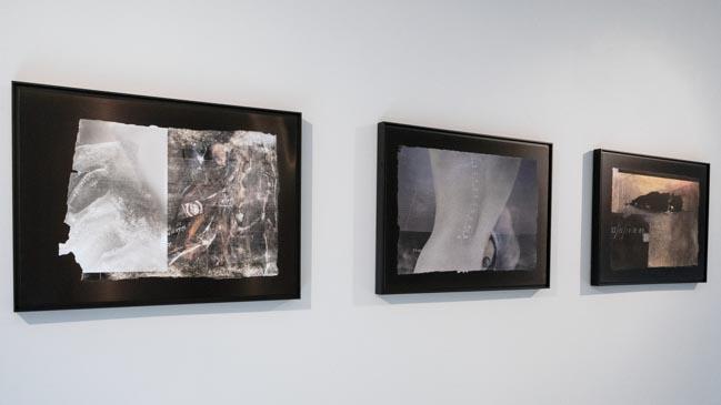 Muriel Hasbun, Record: Pulsos Culturales en RoFa Projects, 2021. Vista de la serie Pulso: Nuevos registros culturales, impresión con tintas de archivo pigmentadas sobre aluminio anodizado.