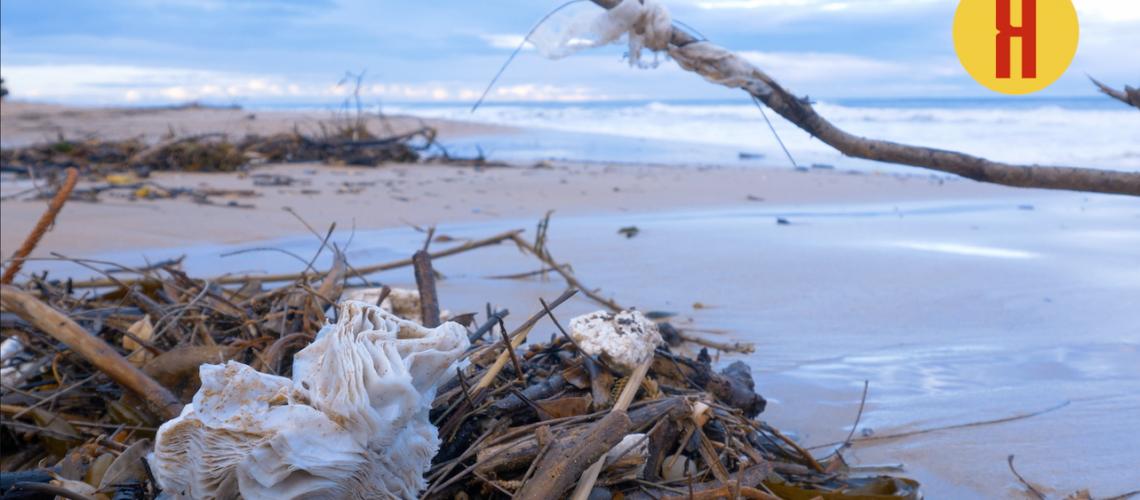 Plástico-Playa